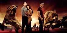 Die Twilight Saga - Die Bis(s) Verfilmungen