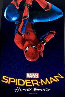 Spider Man Reihenfolge